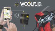 Woolf-Moto Intelligent Drive