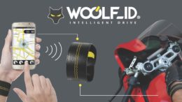 Woolf-Moto Intelligent Drive